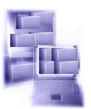 Разработка заказного программного обеспечения внутри компании